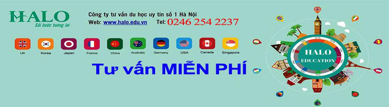 Công ty tư vấn uy tín số 1 Hà Nội