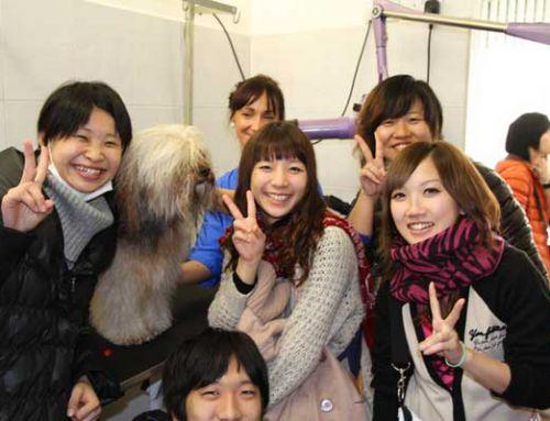 Điều kiện du học Nhật Bản 2016