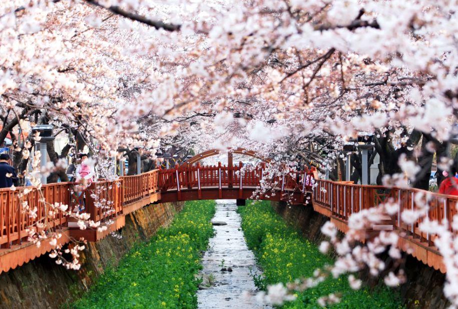 12 điều làm cuộc đời bạn thay đổi khi đi du học ở Hàn Quốc