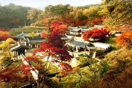 Danh sách 30 trường đại học ở seoul Hàn Quốc