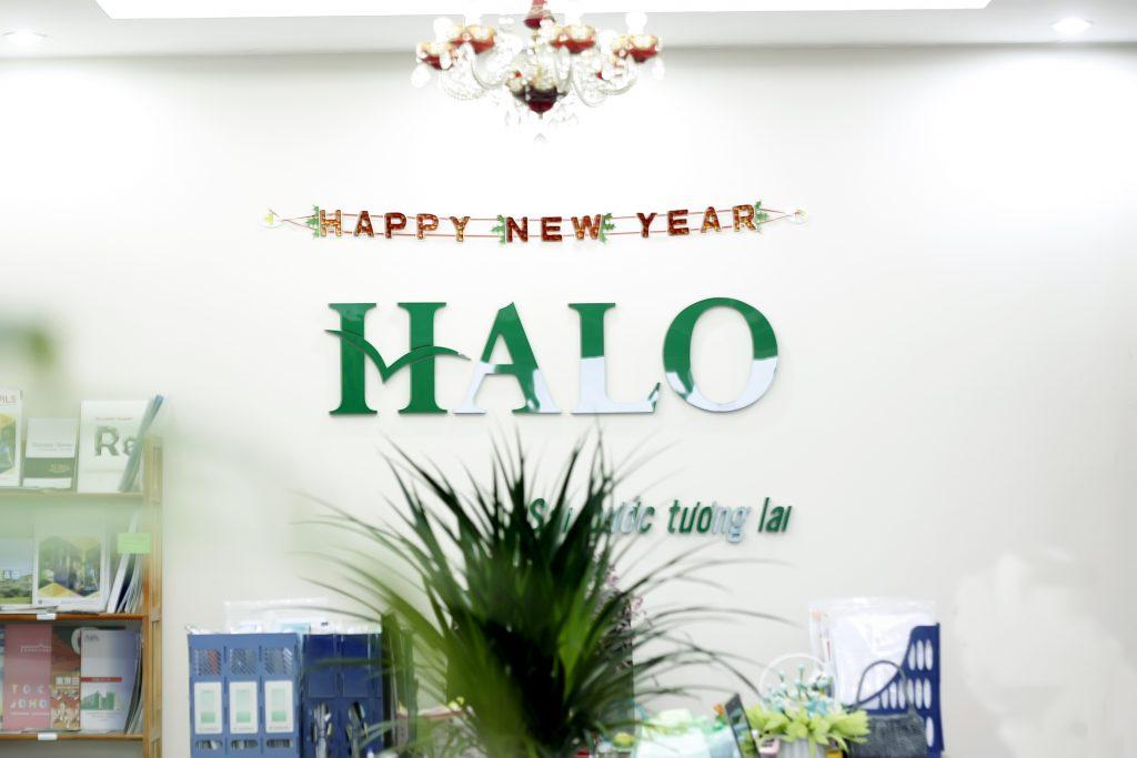 Công ty tư vấn du học Halo - Trung tâm du học uy tín tại Hà Nội