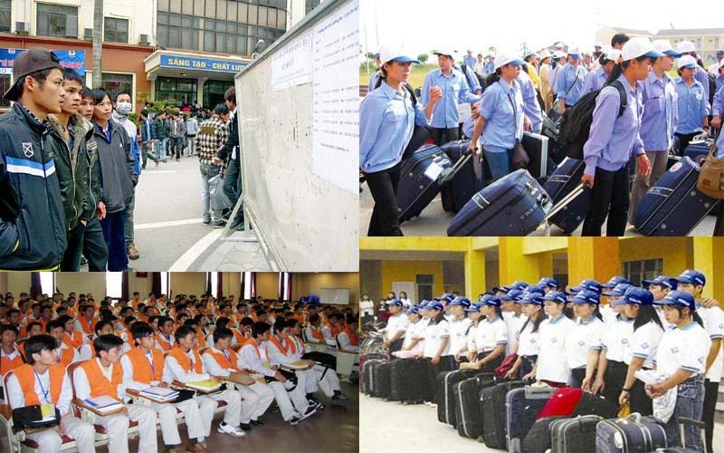 Nên đi xuất khẩu lao động với visa E3 Hàn Quốc hay đi du học