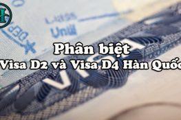 Phân biệt Visa D2 và Visa D4 Hàn Quốc