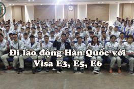Xuất khẩu lao động Hàn Quốc với visa E3, E5, E6 Hàn Quốc