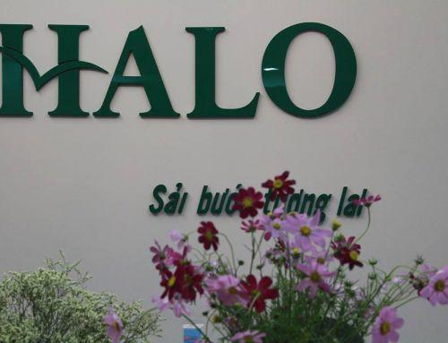 """Cảm ơn báo """"Người Hà Nội"""" đã cùng HALO Group lan tỏa các giá trị giáo dục"""