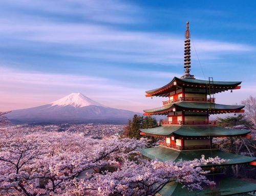 Du học Nhật Bản chọn ngành gì tốt ?