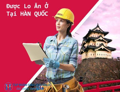 VISA E7 – E8 – Giải Pháp Ưu Việt Dành Cho Những Người Chỉ Muốn Sang Hàn Để Kiếm Tiền