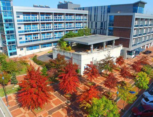 Tất Tần Tật Thông tin về trường đại học Daegu Technical
