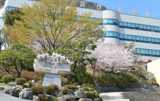 Đại học Kosin - Trường top tại Busan cấp Visa thẳng 2020 « AMEC