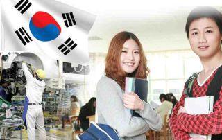 Du Học Nghề Hàn Quốc Là Gì? Đi Du Học Nghề Hàn Quốc Có Khó Không?