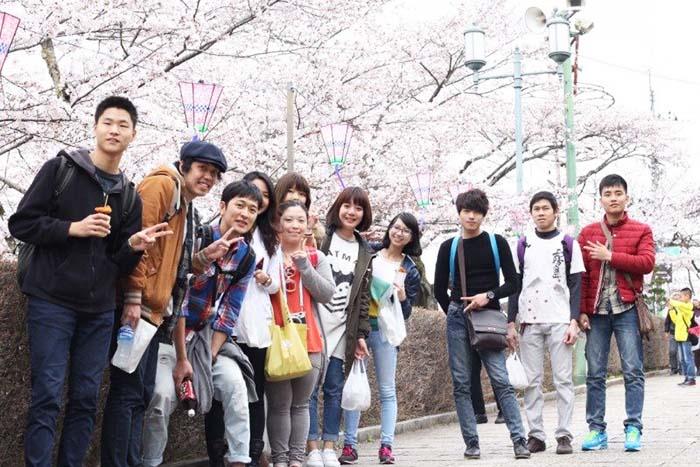 Có nên học tiếng Hàn trước khi du học Hàn Quốc? « AMEC