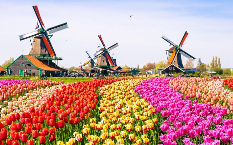 Du Lịch Châu Âu [Pháp - Lux - Bỉ - Hà Lan - Đức] | Adora Tour ...